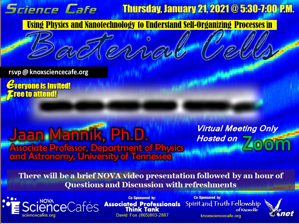 January Science Cafe Flyer