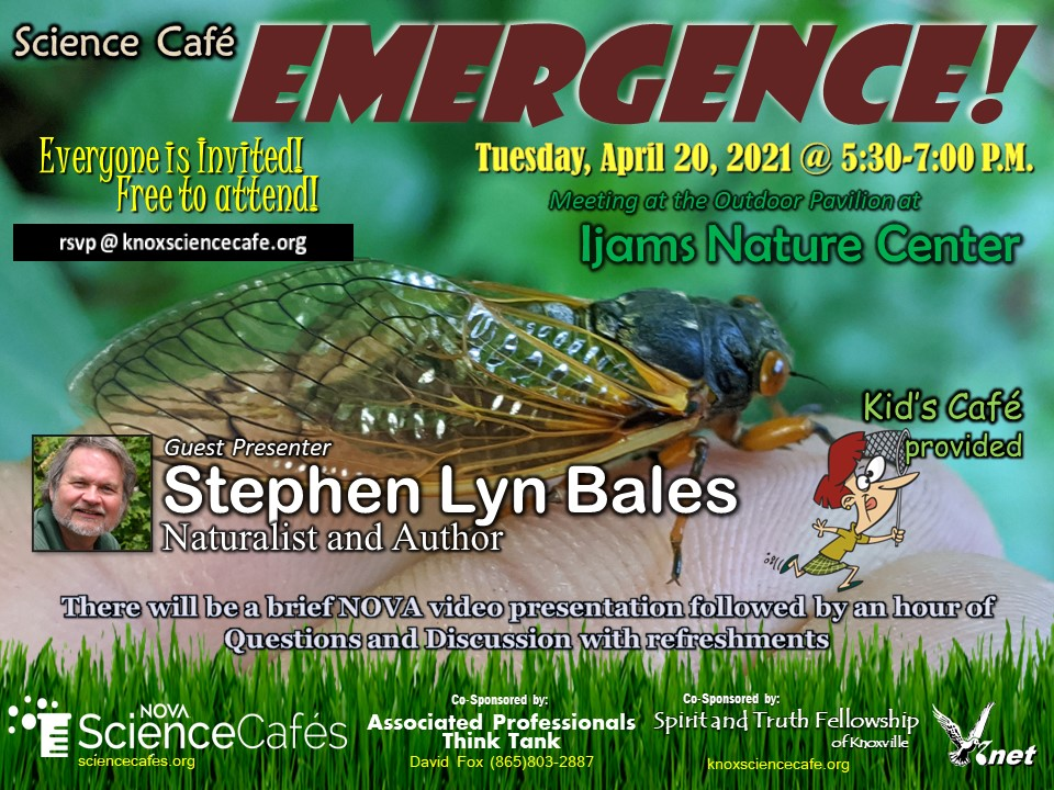 October Science Cafe Flyer